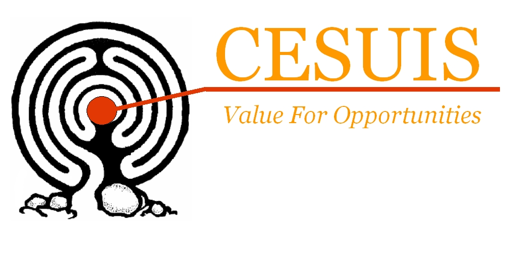 "CESUIS ""Value for Opportunities"""